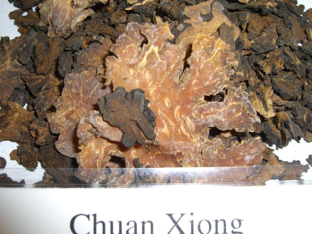 chuan_xiong.jpg